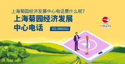 上海菊园经济发展中心